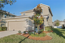 Photo of 12430 Field Point Way, SPRING HILL, FL 34610 (MLS # T3151566)