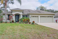 Photo of 618 Cedar Waxwing Drive, BRANDON, FL 33510 (MLS # T3151683)