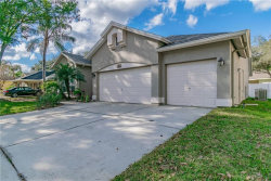 Photo of 9606 Norchester Circle, TAMPA, FL 33647 (MLS # T3151689)