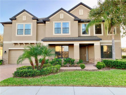 Photo of 13313 Sunset Shore Circle, RIVERVIEW, FL 33579 (MLS # T3151780)