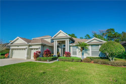 Photo of 16808 Ivy Lake Drive, ODESSA, FL 33556 (MLS # T3151795)