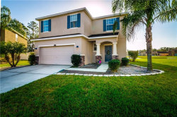 Photo of 2606 Holly Bluff Court, PLANT CITY, FL 33566 (MLS # T3151890)