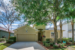Photo of 15426 Pepper Pine Court, LAND O LAKES, FL 34638 (MLS # T3152020)