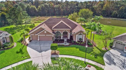 Photo of 27740 Water Ash Drive, WESLEY CHAPEL, FL 33544 (MLS # T3152055)