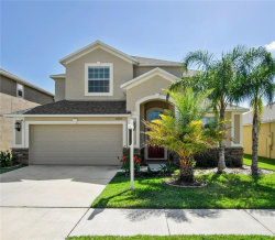 Photo of 11520 Peru Springs Place, RIVERVIEW, FL 33569 (MLS # T3152088)