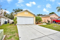 Photo of 4504 Country Hills Boulevard, PLANT CITY, FL 33563 (MLS # T3152091)