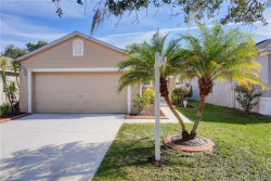 Photo of 8541 Deer Chase Drive, RIVERVIEW, FL 33578 (MLS # T3152428)