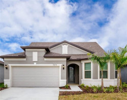 Photo of 7874 Yale Harbor Drive, WESLEY CHAPEL, FL 33545 (MLS # T3155193)