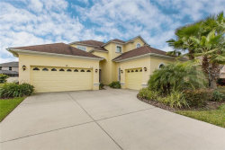 Photo of 3529 Diamond Falls Circle, LAND O LAKES, FL 34638 (MLS # T3155296)