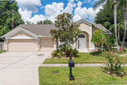 Photo of 8445 Ridgebrook Circle, ODESSA, FL 33556 (MLS # T3155434)