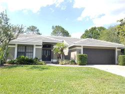 Photo of 30231 Fairway Drive, WESLEY CHAPEL, FL 33543 (MLS # T3156378)