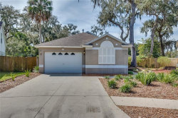 Photo of 6929 Summer Harbor Lane, RIVERVIEW, FL 33578 (MLS # T3157069)