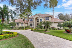 Photo of 15703 Cochester Road, TAMPA, FL 33647 (MLS # T3157296)