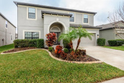 Photo of 11713 Albatross Lane, RIVERVIEW, FL 33569 (MLS # T3157454)