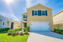 Photo of 12009 Suburban Sunrise Street, RIVERVIEW, FL 33578 (MLS # T3157614)
