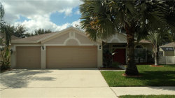 Photo of 10715 Rockledge View Drive, RIVERVIEW, FL 33579 (MLS # T3157649)