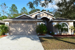 Photo of 4832 Copper Canyon Boulevard, VALRICO, FL 33594 (MLS # T3157878)