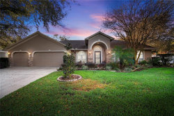 Photo of 4303 Gentrice Drive, VALRICO, FL 33596 (MLS # T3157887)