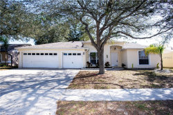 Photo of 11217 Andy Drive, RIVERVIEW, FL 33569 (MLS # T3157931)