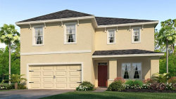 Photo of 30788 Summer Sun Loop, WESLEY CHAPEL, FL 33545 (MLS # T3158031)