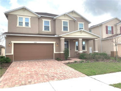 Photo of 11503 Luckygem Drive, RIVERVIEW, FL 33579 (MLS # T3158130)