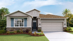 Photo of 2544 Knight Island Drive, BRANDON, FL 33511 (MLS # T3158220)