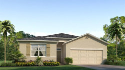 Photo of 2538 Knight Island Drive, BRANDON, FL 33511 (MLS # T3158226)