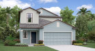 Photo of 10018 Rosemary Leaf Lane, RIVERVIEW, FL 33578 (MLS # T3158484)