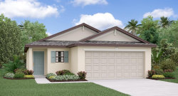 Photo of 10014 Rosemary Leaf Lane, RIVERVIEW, FL 33578 (MLS # T3158516)
