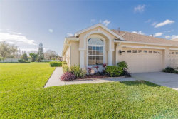 Photo of 19416 Haskell Place, LAND O LAKES, FL 34638 (MLS # T3158682)