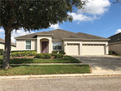 Photo of 525 Arch Ridge Loop, SEFFNER, FL 33584 (MLS # T3160397)