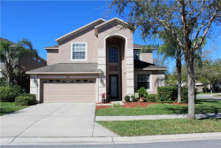Photo of 10626 Liberty Bell Drive, TAMPA, FL 33647 (MLS # T3161859)