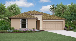 Photo of 903 Zone Tailed Hawk Place, RUSKIN, FL 33570 (MLS # T3162173)