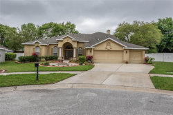 Photo of 2803 Clover Dew Court, VALRICO, FL 33596 (MLS # T3162579)