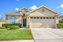 Photo of 2808 Graphite Court, VALRICO, FL 33594 (MLS # T3162759)