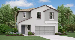 Photo of 5134 Sable Chime Drive, WIMAUMA, FL 33598 (MLS # T3162959)
