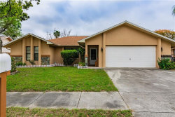 Photo of 11433 Brown Bear Lane, PORT RICHEY, FL 34668 (MLS # T3162962)