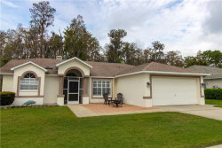 Photo of 5051 Musselshell Drive, NEW PORT RICHEY, FL 34655 (MLS # T3163189)