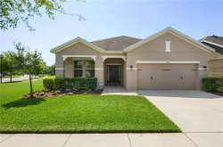 Photo of 15713 Courtside View Drive, LITHIA, FL 33547 (MLS # T3163224)