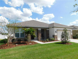 Photo of 6358 Sparkling Way, WESLEY CHAPEL, FL 33545 (MLS # T3163336)