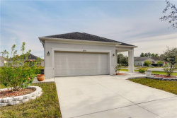 Photo of 8234 Summer Wood Lane, RIVERVIEW, FL 33578 (MLS # T3163404)
