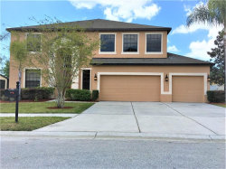 Photo of 10801 Rain Lilly Pass, LAND O LAKES, FL 34638 (MLS # T3163965)