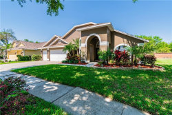 Photo of 6917 Cohasset Circle, RIVERVIEW, FL 33578 (MLS # T3163987)