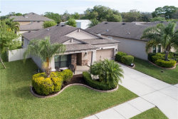 Photo of 11502 Scarlet Ibis Place, RIVERVIEW, FL 33569 (MLS # T3164089)