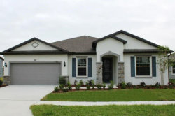 Photo of 7788 Yale Harbor Drive, WESLEY CHAPEL, FL 33545 (MLS # T3164722)