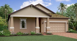 Photo of 13929 Snowy Plover Lane, RIVERVIEW, FL 33579 (MLS # T3164746)