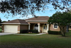 Photo of 15127 Old Johnston Road, DADE CITY, FL 33523 (MLS # T3165783)