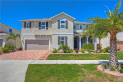 Photo of 11427 Brighton Knoll Loop, RIVERVIEW, FL 33579 (MLS # T3168812)