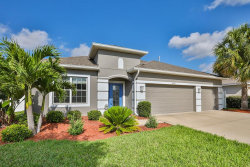 Photo of 10223 Caraway Spice Avenue, RIVERVIEW, FL 33578 (MLS # T3168951)