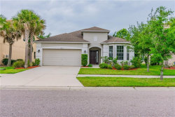 Photo of 8625 Deep Maple Drive, RIVERVIEW, FL 33578 (MLS # T3169075)
